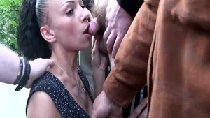 Chick licking King Cock